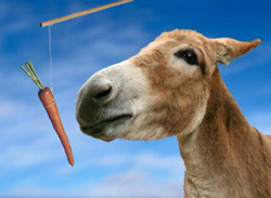 Carrot on a stick...